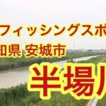 半場川  穴場 バス釣りポイント 愛知県 安城市 ブラックバス