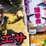 日本に持ち込んだ怪しい粉で魚を釣る!