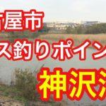 神沢池 名古屋市 バス釣りポイント ブラックバス