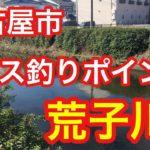 荒子川  名古屋市バス釣りポイント ブラックバス