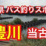 豊川 当古橋 愛知県 バス釣りスポット ブラックバス