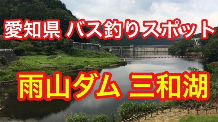 雨山ダム 三和湖 愛知県 バス釣りスポット ブラックバス