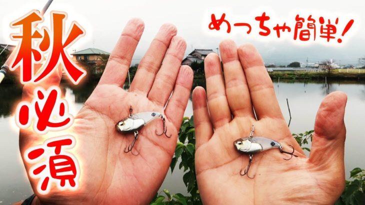 【バス釣り】秋に釣れない人にもオススメ!一つは必ず持ってたいルアー!!
