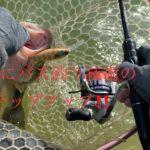 春までの冬の間にバス釣り技術をステップアップ‼️【バス釣り】【バスフィッシング】