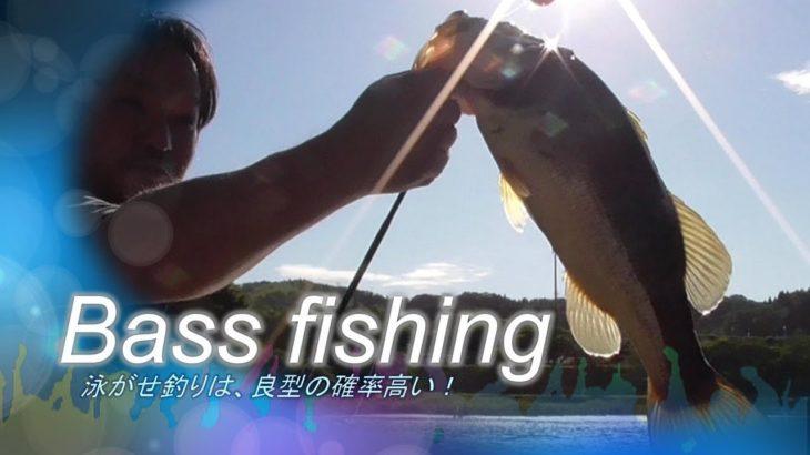 【ブラックバス釣り】野池で泳がせ釣り。鉄板で良型が掛かる!