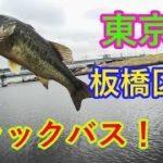 東京の荒川でブラックバスを狙う!【第一弾】