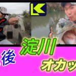 【淀川バス釣り】台風後の淀川でオカッパリ