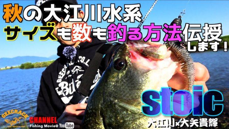 【バス釣り】秋の大江川水系!サイズも数も釣る方法伝授します!(大江川:大矢貴輝)