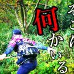バス釣りしてたらすぐ後ろの茂みの中に何かいた!逃げろ!【バス釣り・ライギョ釣り】