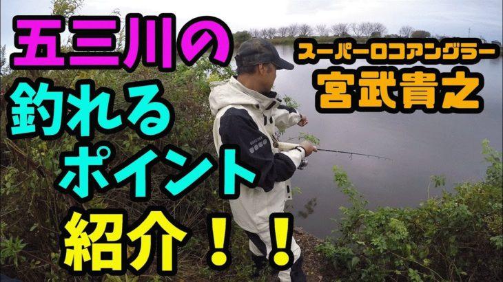 【バス釣り】五三川の釣れるポイント紹介!【スーパーロコアングラー】【宮武貴之】