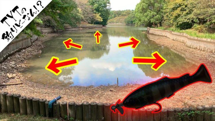 【バス釣り 秋】減水野池でスイムベイトを投げてみると…
