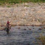 長良川の鮎釣り
