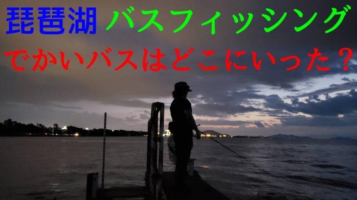 【バス釣り】琵琶湖バスフィッシング  でかいバスはどこにいった?