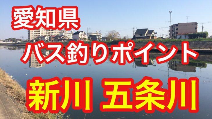 新川  五条川 合流点  愛知県 バス釣りポイント ブラックバス