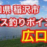 広口池 愛知県 稲沢市 バス釣りポイント ブラックバス