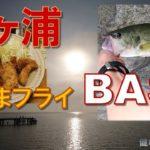 【霞ヶ浦】ブラックバスを【激ウマ】に料理する方法(健啖隊ネット隊員 y.katsu)