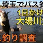 東京と埼玉 【大場川全域でバス釣り調査!】 ラージ1ゲット 東京 埼玉  川 バス釣り