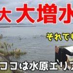10月 豪雨後の霞ヶ浦釣行と様子! バス釣り 霞水系