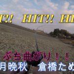 【バス釣り】ブラックバスを求めて!【11月】晩秋 倉橋ため池 野池