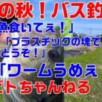バス釣り#11【食欲の秋!バス釣り!いろんなルアーで釣ったった!】
