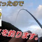 【バス釣り】11月中旬に爆釣したった【厳寒期】【野池】【福岡】