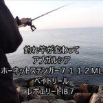 琵琶湖 ブラックバス釣り11月17日