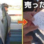 #2 沢山釣れた魚を売ったら意外と○○だった・・・
