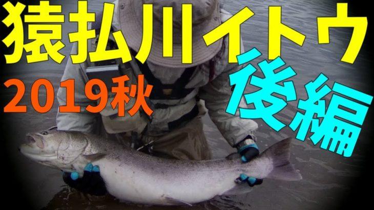 猿払川イトウ釣り2019年 秋冬シーズン(後編3/3)2019年10月26日&27日 北海道 フライフィッシング apeman a100s Hokkaido Fishing Hucho perryi