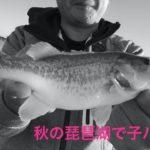 2019琵琶湖 秋 子バス 祭り