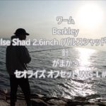 2019年11月11 琵琶湖 ブラックバス釣り