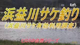 石狩市@浜益川サケ釣り(浜益川有効利用調査)  2019/11/01 (7分34秒))