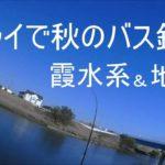 フライで秋のバス釣り霞水系&地元2019/11/8-9