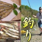 小鮎釣り。コアユ釣ってからあげ!うまいぞ! 令和初コアユ釣り2019。大漁。 川の小物釣り41。 琵琶湖 爆釣 River Fishing