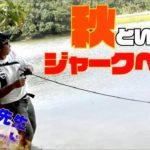 【バス釣り】秋はジャークベイトで決まり!バスプロ30分の本気モード【藤波和成プロ】