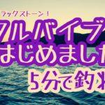 【5分で釣れ!】メタルバイブはじめました!?【琵琶湖バス釣り】