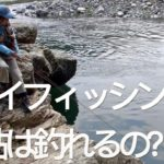 Fly Fishing the Local, with a Drone  桂川 フライフィッシング  身近なターゲット