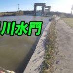 小見川水門!!北利根川 メジャー P 調査!(11/12)ブラックバス釣り