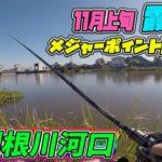 メジャー P 調査!霞水系!新利根川河口!(11/5) ブラックバス釣り
