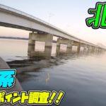 北浦大橋!!霞水系 メジャー P 調査!(11/6) ブラックバス釣り