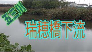 五三川   瑞穂橋下流   バス釣りポイント