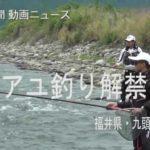 アユ釣り解禁 福井・九頭竜川