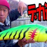 【バス釣り】デカすぎるバス釣りルアーをぶん投げた!