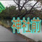 五三川   神社前   バス釣りポイント