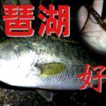 【ブラックバス】晩秋の琵琶湖は釣れるぞ!【実釣解説】