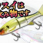 【東京湾シーバス】ダウスイは飲み物です2019超絶爆釣編