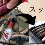 バス釣り/ネコソギプレイボックス/琵琶湖
