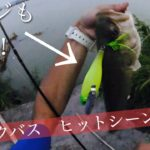 ヒットシーン詰合せ!夏から秋にかけて〜【ブラックバス】【釣り】【ダッジ】