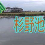 五三川   杉野池   バス釣りポイント