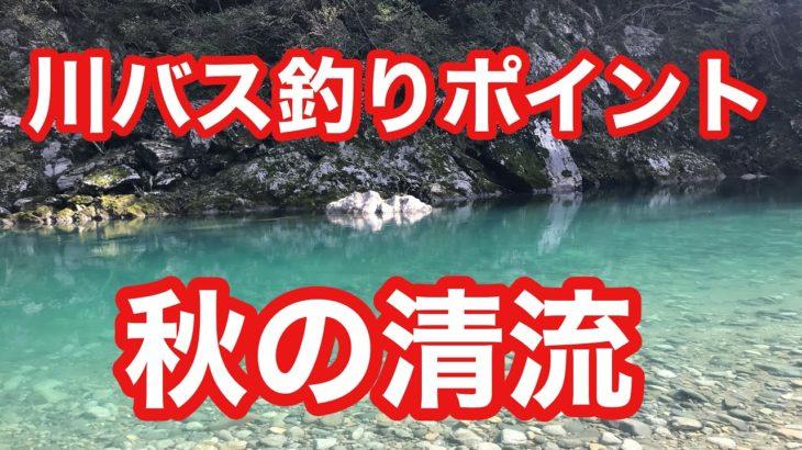 秋の清流 川バス釣りポイント スモールマウスバス