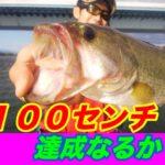 淀川バス釣り】3本100センチ クリアなるか!?